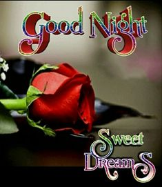 Good Night, Good Morning, Beautiful Love Pictures, Neon Signs, Messages, Nighty Night, Buen Dia, Bonjour