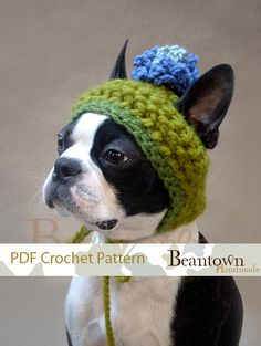 CROCHET PATTERN Blue Blossom Dog Hat by BeanTownHandmade on Etsy