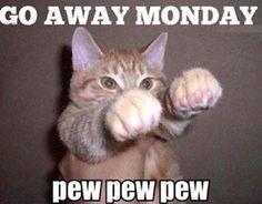 Monday stinks!