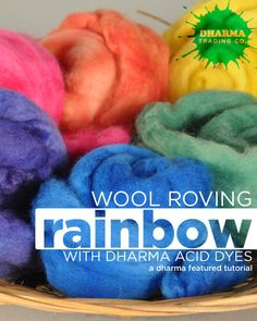 Dharma Featured Tutorial Wool Roving Rainbow with Dharma Acid Dyes