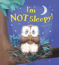 """Book Review: """"I'm NOT Sleepy!"""" By Jane Chapman - Childrens Bookstore"""