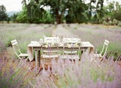 Lilacs and lavender :)
