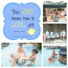 Travel to Jacksonville Florida, Jacksonville Zoo & Gardens - Cool off at their Splash Park or play in the shade of the gardens!