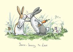 some bunnie in love