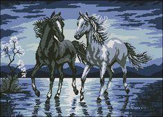 Gallery.ru / Фото #25 - лошади - zhivushaya