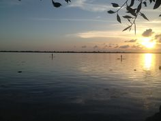 Check out the paddle boarders enjoying a sunset on big pine Big Pine Key, Boarders, Key West, Paddle, Paradise, Celestial, Sunset, Check, Outdoor