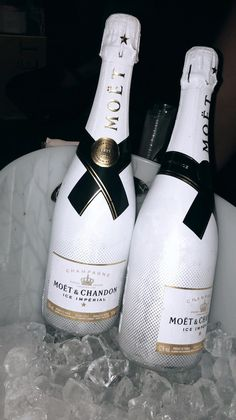 Wondering What You Dont Know About Wine Read This Article 3 – Wine Don Perignon, Alcohol Aesthetic, Alcoholic Drinks, Cocktails, Moet Chandon, Instagram Story Ideas, Drink Bottles, Kylie Jenner, Liquor