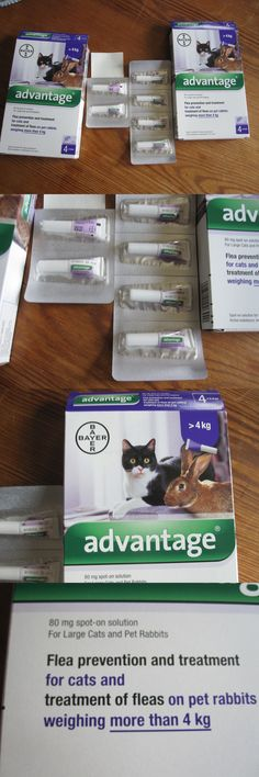 Flea and Tick Remedies 20738: Bayer Advantage For Large Cats Dogs And Pet Rabbits 4 Pack And 2 Singles Expire 8/18 -> BUY IT NOW ONLY: $50 on eBay!