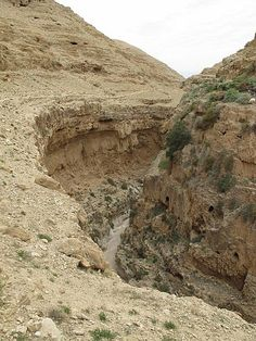Wadi Qelt. Wadi Qelt also Nahal Prat is a valley or stream running west to east across the Judaean Desert in the West Bank, originating near Jerusalem and terminating near Jericho, near the Dead Sea. Wadi Qelt is home to a unique variety of flora and fauna.