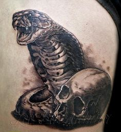 Cobra Tattoo Designs | Dangerous Snakes