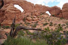 Windows Loop, Arches National Park, Utah