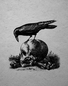 Raven and scull