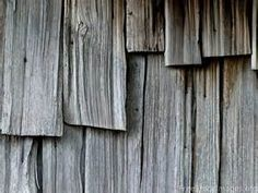Texture of Wood - Yahoo Image Search Results