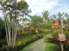 bali resort - Tìm với Google