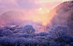 Photograph winter morning by Jaewoon U on 500px