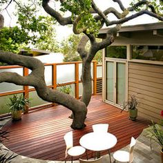 The Cottage Cheese: Patios & Outdoor Rooms Deck Around Trees, Tree Deck, Porch Tree, Courtyard Design, Deck Design, Garden Design, Courtyard Ideas, Courtyard Gardens, Courtyard Landscaping