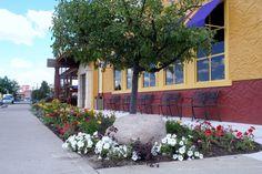 Commercial Landscape Services West Michigan