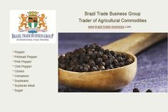 Spices of Brazil Trade Business Group