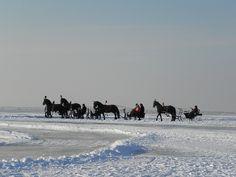 Wintertime in Friesland a region in the north of the Netherlands (were we live ;-)); belslydjeien in Hindeloopen