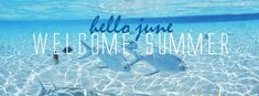 Hello June, Welcome Summer - Facebook cover