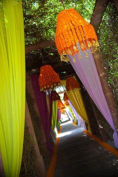 Marigolds in Indian wedding walkway Indian Wedding Decorations, Wedding Themes, Flower Decorations, Wedding Designs, Wedding Colors, Wedding Events, Indian Weddings, Wedding Ideas, Wedding Flowers