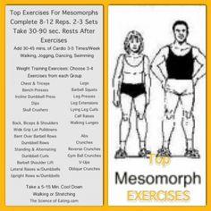 Workout Mesomorph Body Type