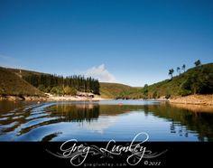Mofam Wedding Venue Elgin Western Cape Lodge Wedding, Best Wedding Venues, River Lodge, Cape Town South Africa, Professional Photographer, Weddings, Water, Outdoor, Best Destination Wedding Locations