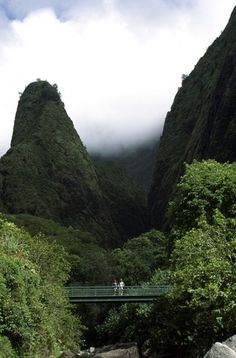 Iao Valley State Park, Maui:  Botanical Gardens