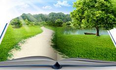 A importância da consciência ambiental   Boas Escolhas
