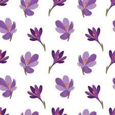 Saffron Seeds, Growing Saffron, Saffron Flower, Flying Flowers, Free Vector Art, Photo Illustration, Art Images, Flower Patterns, Royalty Free Images