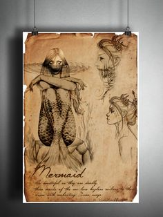 beautiful creatures from mythology and fantasy Mermaid supernatural american folklore art sketch, cryptozoology field guide, bestiary art Mythical Creatures Art, Mythological Creatures, Magical Creatures, Mythological Monsters, Fantasy Kunst, Fantasy Art, Dark Fantasy, Folklore, Myths & Monsters