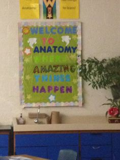 Anatomy board