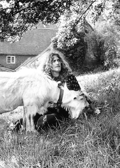 Robert Plant. With a goat. Does it get any better?