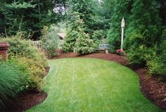 What I'd like my backyard to look like. Any small fragile plants in pots. The rest trees and hardy shrubs (dog proof). Minimal lawn.