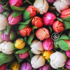 Bright and cheerful tulips #lilacflowerboutique #lilacbaku #lilac #lilacportbaku #lilac247 #beatgroup #baku #azerbaijan #flowers #florist #bouquet #yourfriendlyflorist #march8 #presents #gifts #tulips