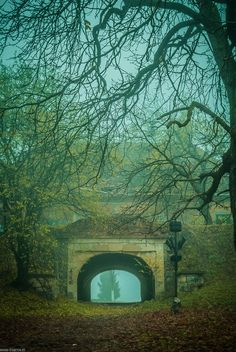 Ancient Portal, Cluj-Napoca, Romania photo via karen