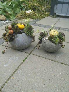 Hypertufa Concrete Objects on Pinterest | Concrete Planters ...