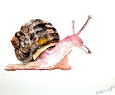 Garden Snail, original watercolor painting, 10 X 8 in, Watercolor Drawing, Watercolor Animals, Watercolor Paintings, Snails In Garden, Garden Snail, Snail Art, Exotic Pets, Art Tutorials, Cute Drawings