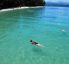 Manukan Island Diving