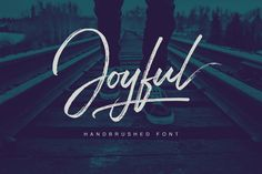 Joyful Script - A Handbrushed Signature Style FontJoyful Script comes with upper and lowercase characters, punctuation glyphs, numerals, web font, and supports international languages. Stylistic sets for several key lower case characters are also availa… Handwritten Fonts, Script Fonts, New Fonts, Script Writing, Alphabet, H Design, Graphic Design, Studio Design, Blog Design