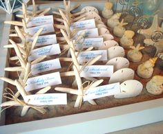 Starfish & shellfish ideas to seat your guests