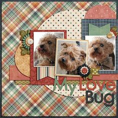 My love bug, Using January Templatetopia and Sweetened with Gratitude – 2019 - Scrapbook Diy Dog Scrapbook Layouts, Paper Bag Scrapbook, Digital Scrapbooking Layouts, Scrapbook Designs, Scrapbook Sketches, Baby Scrapbook, Scrapbook Cards, Christmas Scrapbook Layouts, Freebies