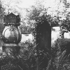 ...To the solemn graves near a lonely cemetery my heart like a muffled drum is beating funeral marches ... . . .  #nothingisordinary #darkgrammer #bnw_rose #pr0ject_bnw #sombreescapes #follow_the_grey_sky #simply_noir_blanc #bnw_planet_2017 #bnw_legit #pocket_bnw #dark_infinity #emotional_dark_pictures #romantic_darkness #fifty_shades_of_darkness #darkart#romantic_noir #starlings_sanctuary #fading_point  #mode_emotive#tv_hiddenbeauty#jj_moodydark#sombrebw#graveyard_dead#graveyard_life…