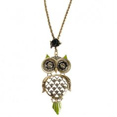 Lovely Owl Pendant~~~ You can easily find it here ~~~ http://www.yesfor.com/p/unique-owl-black-rose-transparent-rhinestone-pendant-long-collar-necklace-30312.html?utm_source=SNS&utm_medium=PINTEREST&utm_campaign=jty