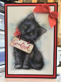 Cat Cards, Greeting Cards, Good Luck Cards, Black Cats, Cat Life, A5, Cardmaking, Cameras, Card Ideas