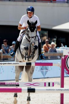 Christian Ahlmann (GER) Most Beautiful Animals, Beautiful Horses, Beautiful World, Horse Love, Grey Horses, Cute Ponies, English Riding, Hunter Jumper, Horse Photos