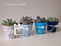 Pacchetti e Confetti: Baby Shop Wedding Favors, Party Favors, Favours, Succulent Gifts, Gift Packaging, Baby Shop, Planting Succulents, Baby Shower Parties, Christening