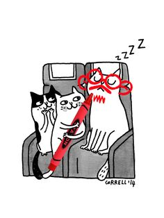 gemma correll and her merry band of misfits I Love Cats, Crazy Cats, Cool Cats, Cat Character, Character Design, Owning A Cat, Cute Drawings, Cartoon Drawings, Cat Art