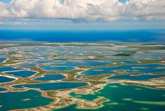 kiritimati kiribati - the first place to enter the New Year.I want to be there on New Years Eve! Blue Plants, Christmas Island, Easter Island, Marshall Islands, Cook Islands, Pacific Ocean, Vacation Destinations, Fly Fishing, Beautiful Landscapes