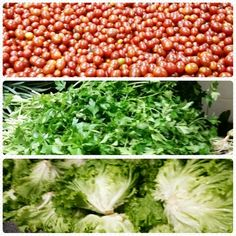 Porque adoro uma feira livre ou  hortifrut,  pra garantir a santa  salada de todo dia! #dbembemviver, #dbem,#bastidores #bemviver, #salada ,#comidacaseira, #comersaudavel. ♡